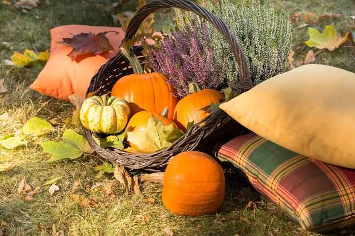 Dem Herbstblues entkommen dank Wohlfühltipps