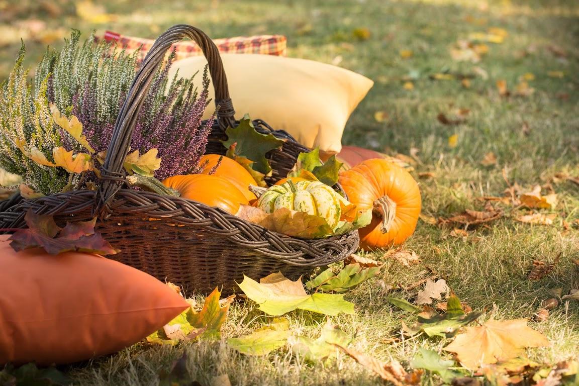 5 Tipps für einen tollen Herbst