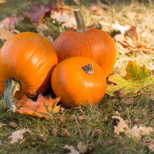 Happy Halloween – gespenstisch schöne Inspirationen